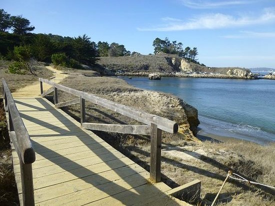 Point Lobos State Reserve : 0.36 miles to Whaler's Cove and Cabin