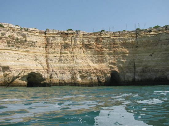 Dolphins Driven: Caves along the coastline