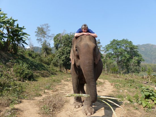 All Lao Elephant Camp: Riding along riverbank
