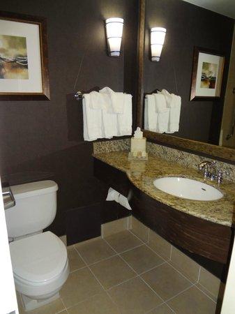 Hilton Garden Inn Austin Downtown/Convention Center: bathroom