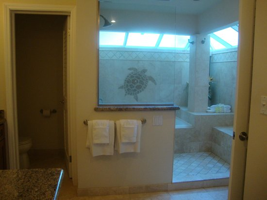 The Kapalua Villas, Maui : Bathroom