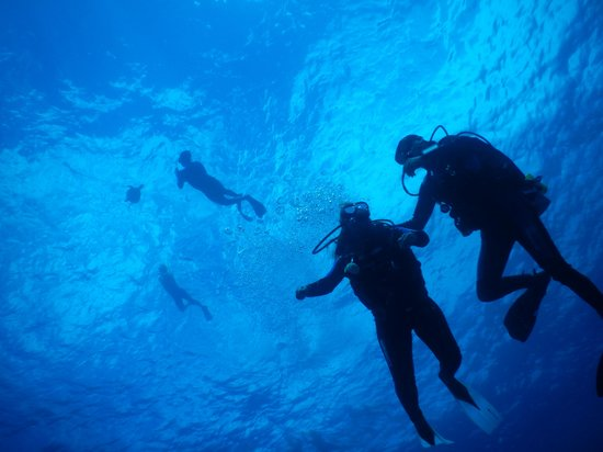 Caribbean Divers : Cesar cuidando a Buza principiante