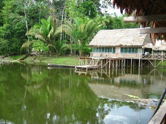 Amazon King Lodge: Hotel a lo  Natural