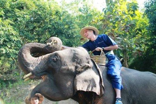 Elephant Life Experience: More snacks!