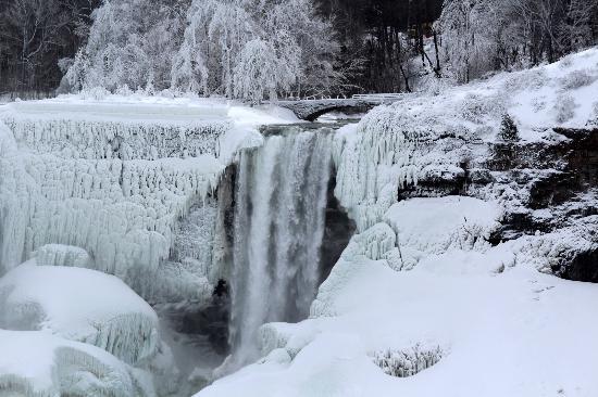Niagara Falls Marriott Fallsview Hotel & Spa : Photo of the iced over Bridal Veil Falls