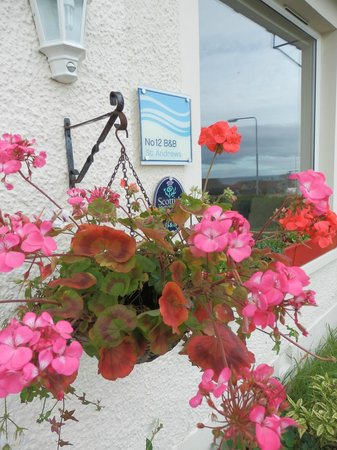 No12 Bed & Breakfast, St Andrews: No 12 B&B