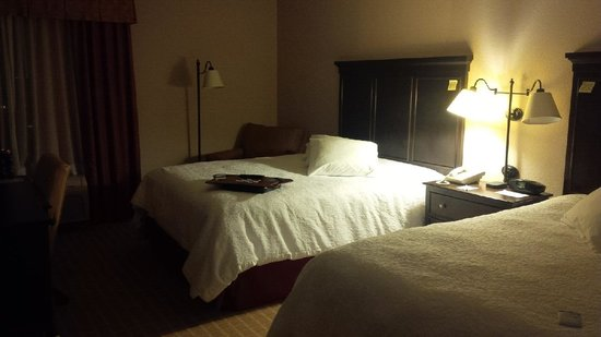 Hampton Inn Dallas - Irving - Las Colinas: Comfy, quiet, and clean room