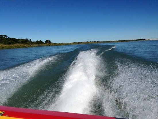 Waiatoto River Safari: Waitoto River jetboating