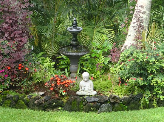 Honu Kai B&B: Peace on the grounds...