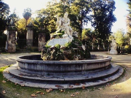 Orto Botanico di Palermo: .