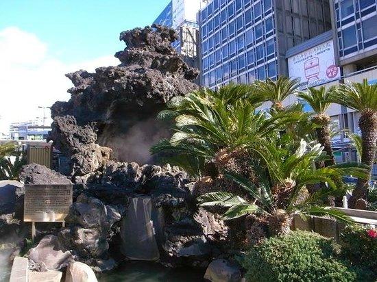 Ieyasu no Yu : 駅前にあります