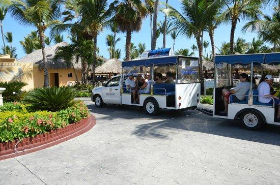 Grand Bahia Principe Turquesa: navette jusque la plage