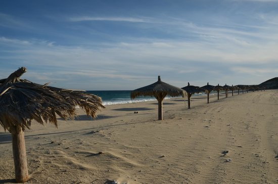 Vidasoul Hotel : palapas down the beach