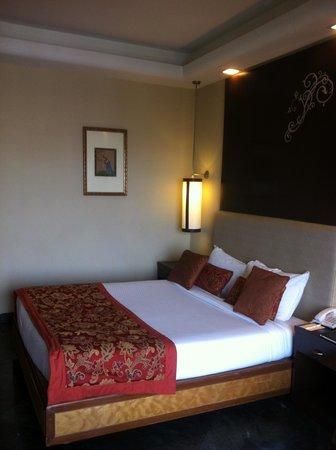 Mansingh Palace, Agra: room