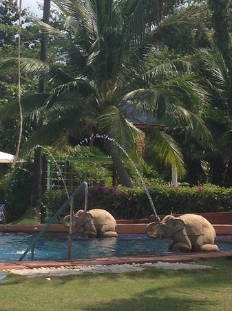 Imperial Boat House Beach Resort, Koh Samui: Elephants by the pool