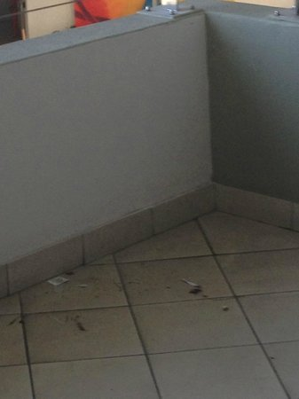 Lagoon Beach Hotel & Spa: Dirt in the corridor outside the apartment. This never got cleaned!
