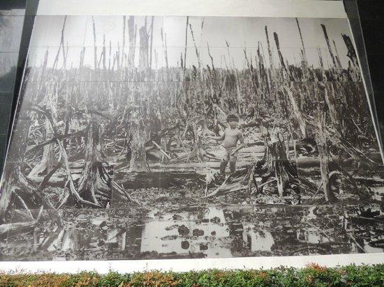 Grand Silverland Hotel & SPA: War Remnants Museum