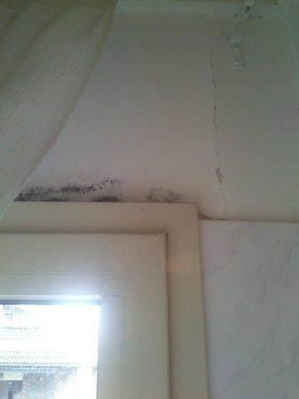 Residenza Maxima : muffa sopra la finestra nella camera da letto