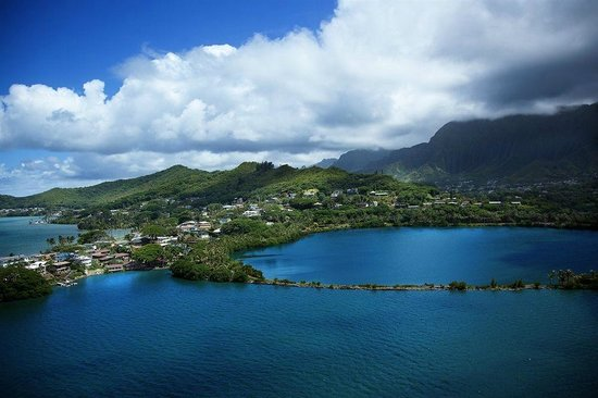Paradise Bay Resort Hawaii : View of Paradise