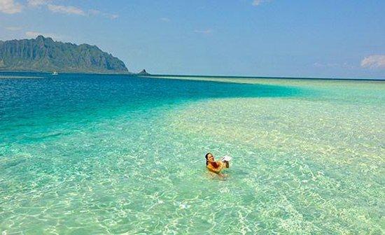 Paradise Bay Resort Hawaii : Relaxation at the Sandbar!