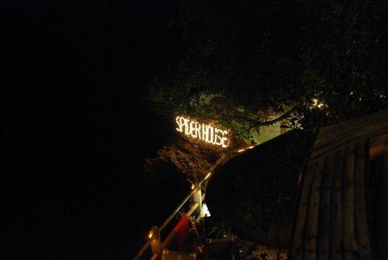 Spider House Resort: ночная подсветка в кафе