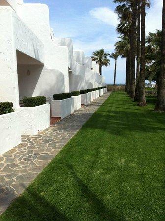 Apartamentos Tamarindos : Hotel garden