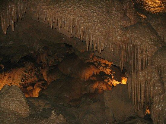 Lake Shasta Caverns: inside shasta caverns