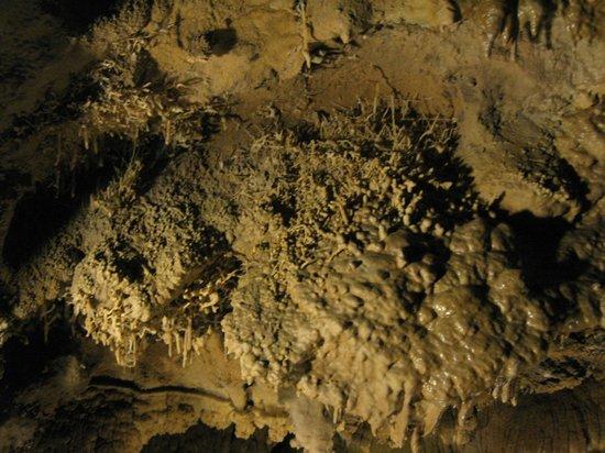 Lake Shasta Caverns : inside shasta caverns