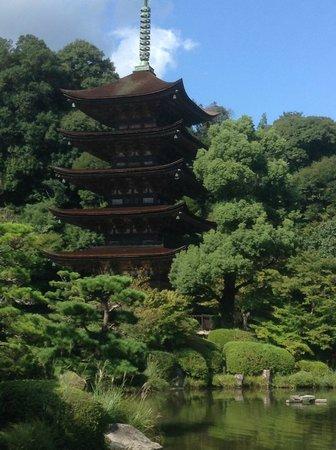 Ruriko Temple Five-Story Pagoda : Pagoda in background