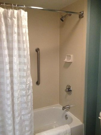 Hyatt Place Atlanta-East/Lithonia: Ducha