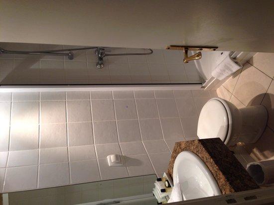Hotel Elysees Union: Salle de bain