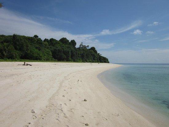 Lankayan Island Dive Resort: Den vita stranden för sköna promenader.