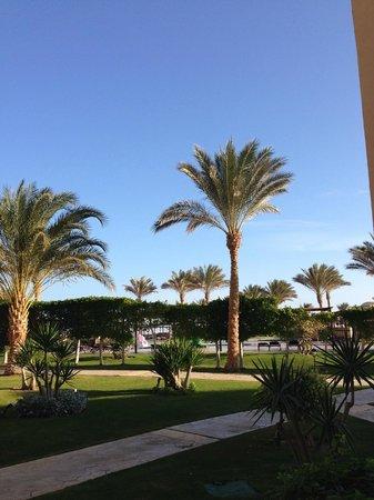 Jaz Lamaya Resort : poolområde