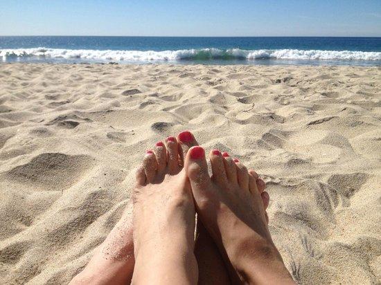 Ocean Palms Beach Resort : Beach