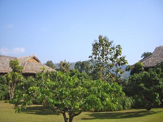 Lisu Lodge: Lisu