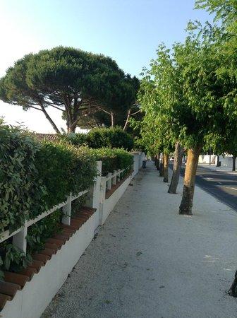 Hotel Restaurant l'Ocean : Дорога на пляж