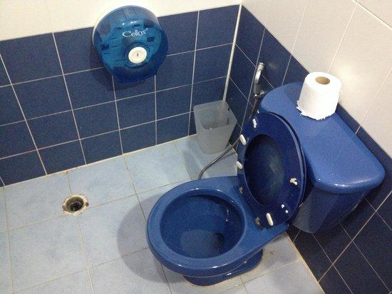 Backpack Guest House: Грязный туалет