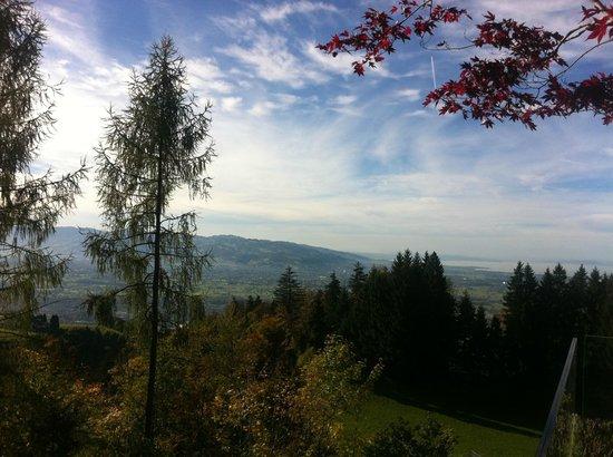 Gesundheitszentrum Rickatschwende: view from terrace