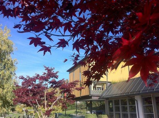 Gesundheitszentrum Rickatschwende: view on a hotel