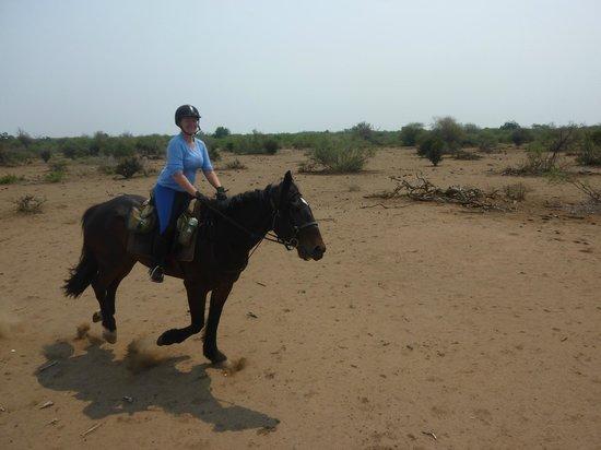 Horizon Horseback Adventures Lodge: Shaka!