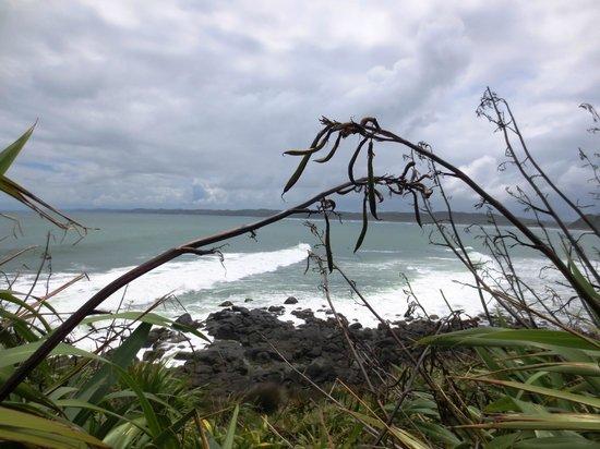 Waoku Lodge : Ragland coastline