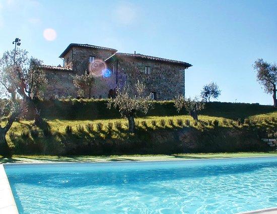 Villa Il Granduca : la villa vista dalla piscina
