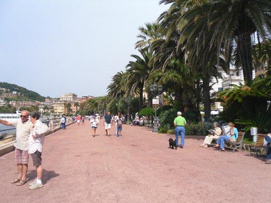 Lungomare Vittorio Veneto : ..lungomare..bella passeggiata