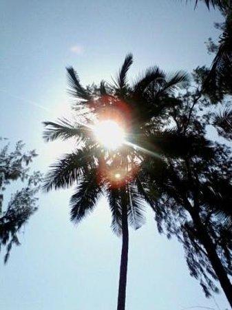 Diani Sea Resort: sun set