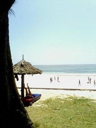 Diani Sea Resort: beach view