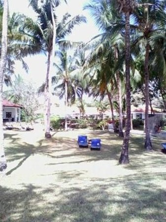 Diani Sea Resort: view from room 413