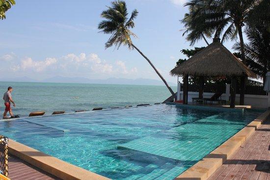 Mimosa Resort & Spa: Piscine à débordement