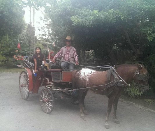 Auangkham Resort : Horse & Carriage
