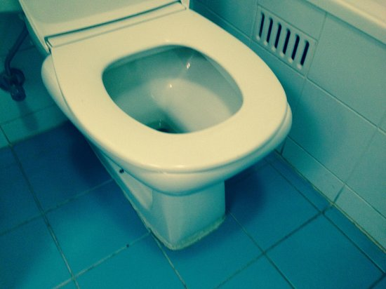 Rydges Capital Hill Canberra: The toilet seat - from the local backpackers?