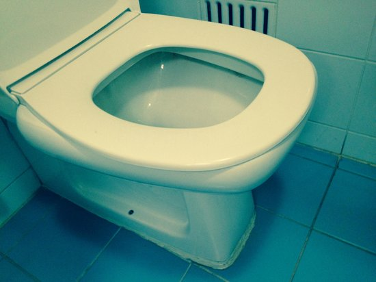 Rydges Capital Hill Canberra: $2 toilet seat (wrong shape / size)
